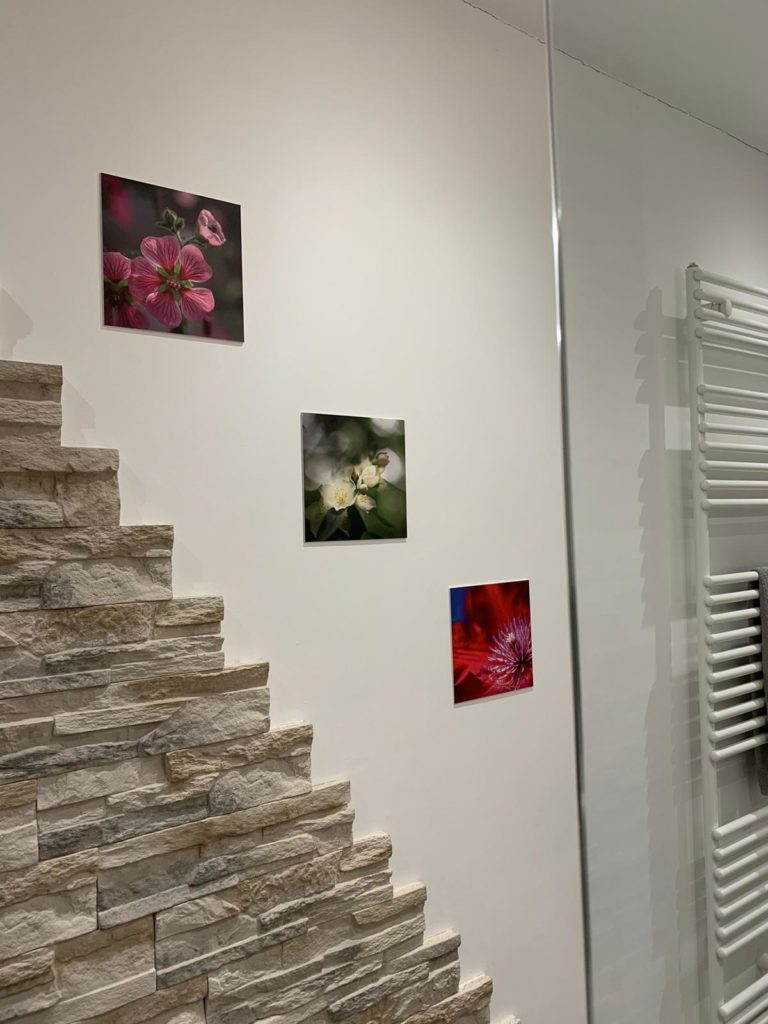wallprints flowers