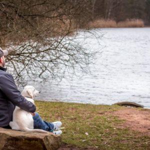 Hund Besitzer See Labrador
