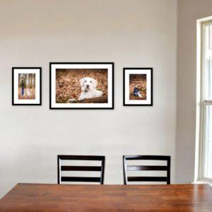 Drei gerahmte Bilder mit weißem Labrador hinter Tisch und Stühlen
