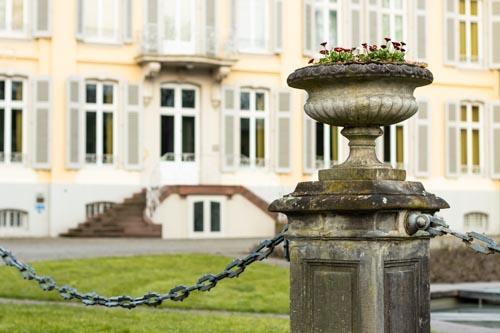 Blumen vor Eingang Schloss Morsbroich