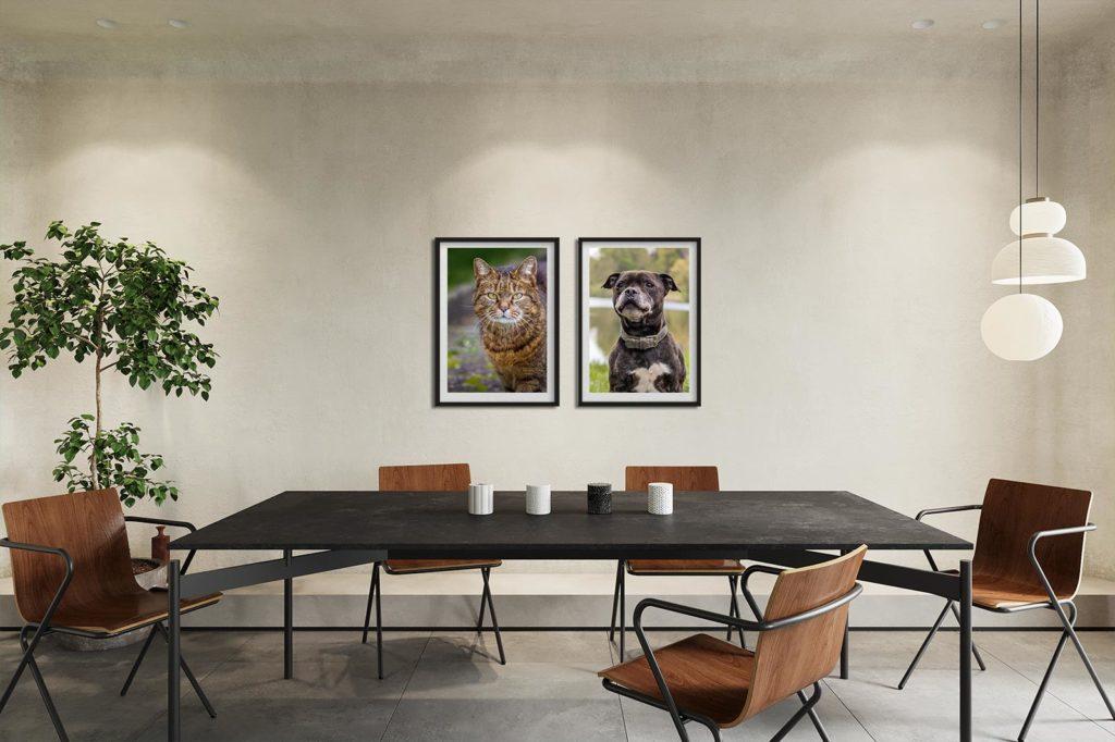 gerahmte Tierbilder in Besprechungsraum